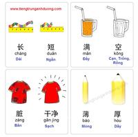 Học các cặp từ trái nghĩa qua hình ảnh (phần 1)