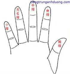 """Học tiếng trung qua """"Hàm ý đeo nhẫn trên mỗi ngón tay """""""