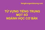Các ngành học thường gặp bằng tiếng Trung