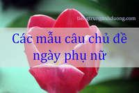 Các mẫu câu tiếng Trung chủ đề ngày phụ nữ