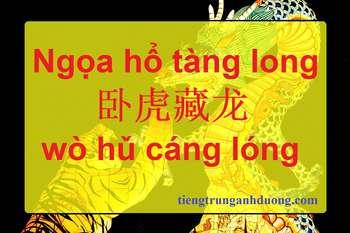 Tìm hiểu thành ngữ: Ngọa hổ tàng long 卧虎藏龙 wò hǔ cáng lóng
